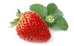 High-definition material Strawberry 287