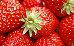 High-definition material Strawberry 3010
