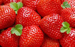 High-definition material Strawberry 3172
