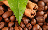 Coffee and coffee beans close-up 14980