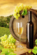 High Definition Stock wines 11286