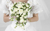 Wedding flower wallpaper wedding ring 5679