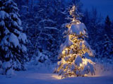 Christmas Wallpaper 8056