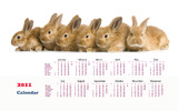 Calendar Year of the Rabbit 14097