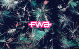 FWA Wallpaper Widescreen 21630