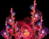 D fantasy abstract flowers 895