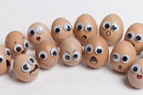 Funny face type cute eggs 12448