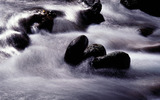 Rhythm of the water 21263