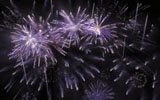 Colorful fireworks 2272