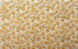 Fabric texture 14674