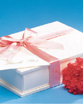 Fashion gift packaging material 14407