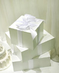 Fashion gift packaging material 15631