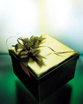 Fashion gift packaging material 17578