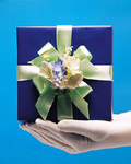 Fashion gift packaging material 18097
