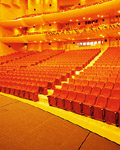 Stage venue material 8439