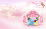 Disney Princess 24249