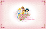 Disney Princess 24358