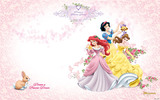 Disney Princess 24732