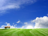 Landscape wallpaper high definition 16110