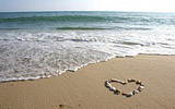 Love on the beach 17312