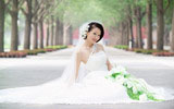 Enjoy the wedding samples 15094