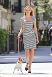 Candice Swanepoel Walks a Dog for a Photo Shoot 33038
