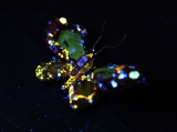 CINDY CHAO Royal Butterfly Brooch Accessioned Into The Smithsonian - Reception 35397