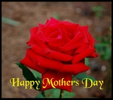 Again, HAPPY MOTHER'S DAY 2013! 35398