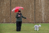 Dogs And Owners Gather For 2013 Crufts Dog Show 37105