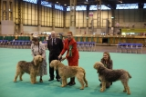 Dogs And Owners Gather For 2013 Crufts Dog Show 37208