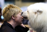 Dogs And Owners Gather For 2013 Crufts Dog Show 37306