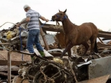 Man survives Oklahoma tornado by taking refuge in horse stall 40219