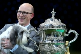 Best In Show Announced At Crufts 40807