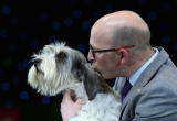 Best In Show Announced At Crufts 40837