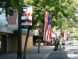 Vandals Destroy American Flag Installation in Downtown Turlock 44932