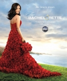 The Bachelorette' 2013: Inside the Fantasy Suite, Former Winner Dishes Behind-the-Scenes Secrets 45505