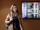 CBS CEO swears network made effort to keep 'NCIS' star Cote De Pablo 45584