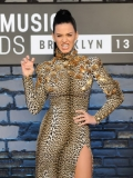 Katy Perry wore a figure-hugging leopard print dress with copper detailing and a thigh-high slit.  She completed the look with classic, black strappy sandals and an eccentric gold-plated grill. 46351