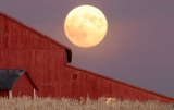 What's So Special About the Harvest Moon? 46521