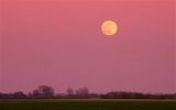 Astronomers to be treated to Harvest Moon along with Venus and Saturn close encounter 46523