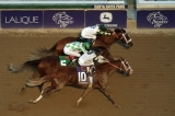 2013 Breeders' Cup: Mucho Macho Man holds on to win Classic in photo finish 47907