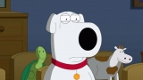 Watch 'Family Guy' Season 12 Episode 6 Online: Who Will Die Tonight In 'Life Of Brian'? 48317