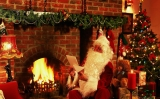 Santa and fireplace 48623