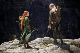 Evangeline Lilly on The Hobbit and Elvish ears 48856
