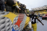 Steelers take care of Browns but see play-off hopes end 49249